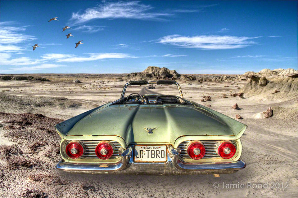 Thunderbird in the Badlands